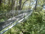 Tree top walk with Tingle trees - Also one of Bill Bryson favourites, this walk in Walpole South West Australia is spectacular as you walk 40m high among the Valley of the Giants.  Busy, but very beautiful